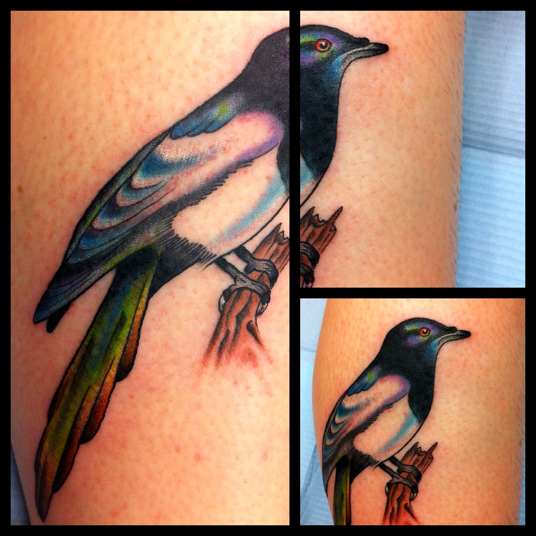 Traditional magpie tattoo - photo#2