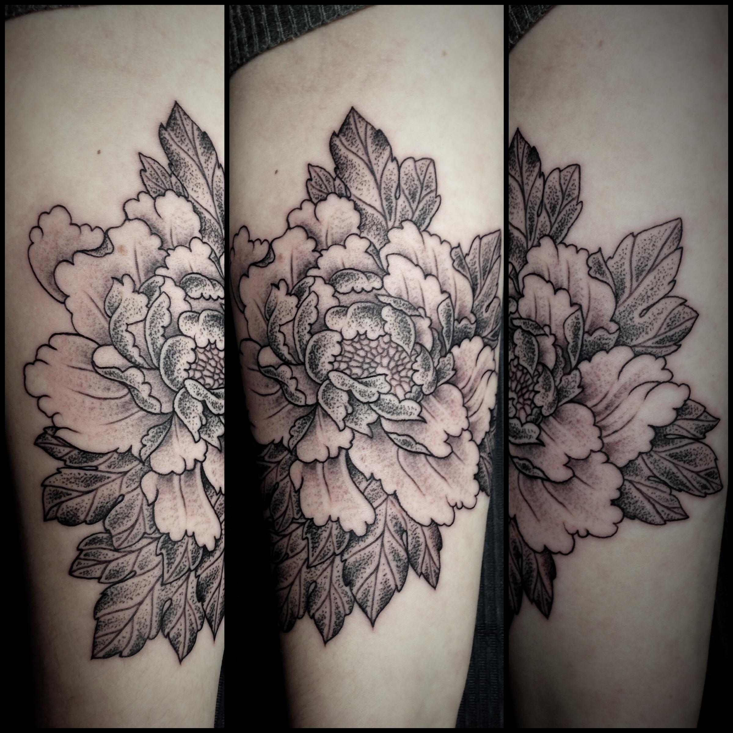 Dotwork Peony Flower   foulds tattoo